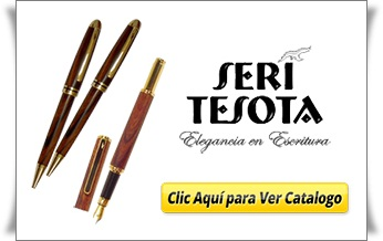 Banner Seri Tesota - Inicio